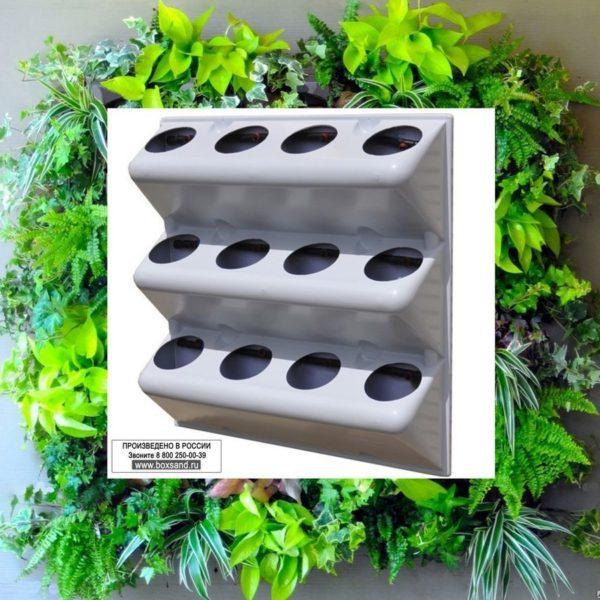 BOXSAND фитомодули, Вертикальное озеленение, зеленые стены СПб
